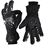 Ski Gloves for Men and Women Waterproof Windproof Snow Skiing Snowboarding Snowmobile Gloves with Non-slip and wear-resistant for Winter outdoors (M, black&plaid)