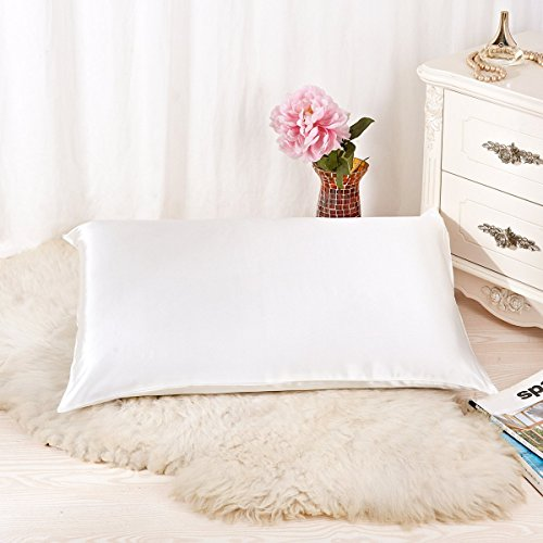 ALASKA BEAR - Natural Silk Pillowcase, Hypoallergenic, 19 momme, 600 thread count 100 percent Mulberry Silk, Queen Size with hidden zipper(Ivory white)