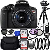 Cheap Canon EOS Rebel T6i 24.2MP DSLR Camera Bundle with 18-55mm f/3.5-5.6 IS STM Lens, Case and Accessory Kit (19 Items)