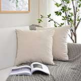Decorative Pillow Cover - Kevin Textile Decorative Pillowcase Cushion Cover for Sofa Velvet Throw Pillow Case Available in 7 Colors & 4 Sizes Solid Color, 20 x 20 inch (50 x 50 cm), Set of 2, Cream