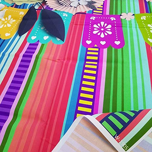 Fiesta Party Fotohintergrund Cinco De Mayo Kamera