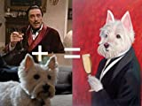 24x36 Hand Painted Custom Pet Oil Portrait Painting on Canvas From Your Photo(s) With Two Figures