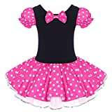 Minnie Infant Girls Polka Dots Princess Party Mouse Costume Pageant Ballet Leotards Tutu Skirt One Piece Bodysuit Romper Dress 1st Birthday Cake Smash Photo Shoot Hot Pink 6-12 Months