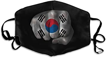 masque anti pollution coreen