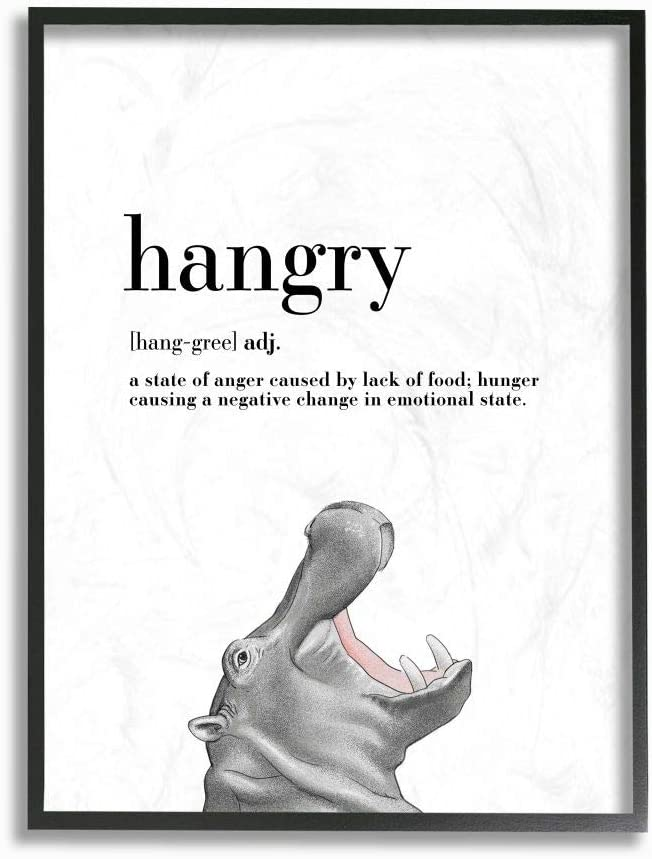 Stupell Industries Hangry Definition Hippo Animal Drawing Word, Design by Artist Ziwei Li Wall Art, 16 x 20, Black Framed