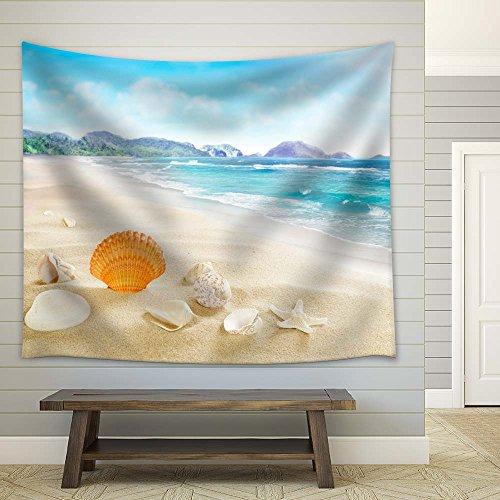 Seashells on Soft Tropical Beach