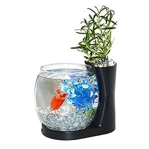 Elive betta fish bowl betta fish tank with for Amazon fish tank