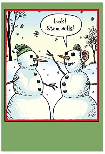 12 'Stem Cells Blank Boxed Christmas' Hilarious Greeting Cards w/ Envelopes 4.63 x 6.75 inch, Winter Note Cards for Xmas, New Year, Holidays, Stationery Set Featuring Funny Snowman Cartoon B1986K
