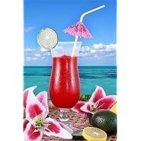 12 x Hawaiian Hula Beach Party Coloured Cocktail Umbrella Parasol Drinking Straws