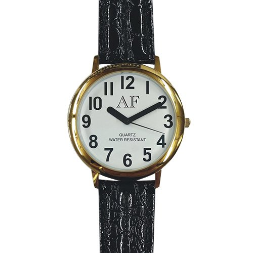 Unisex Low Vision Gold Tone Watch w/White Face by Active Forever