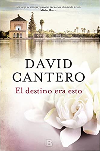 Amazon.com: El destino era esto / This was Fate (Spanish Edition) (9788466660068): David Cantero: Books