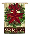 Evergreen Suede Christmas Country Star House Flag, 29 x 43 inches