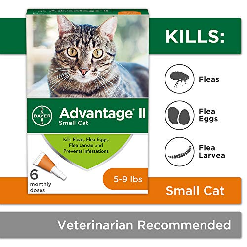 Flea Prevention for Cats, 5-9 lb, 6 doses, Advantage II (Best Way To Kill Head Lice At Home)