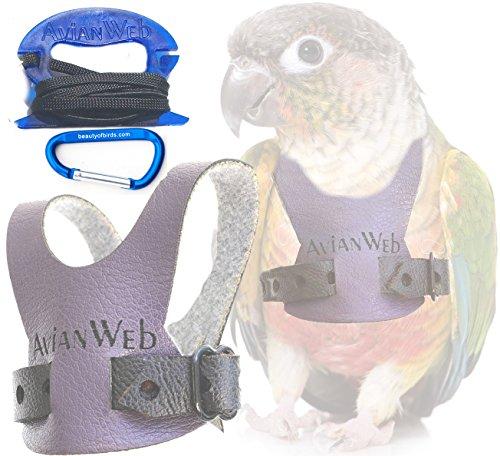 Avianweb EZ Greencheek/Small Conure Harness & 6ft Leash (Plum/Purple, Personalized (w/Pet's Name))