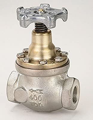 Diaphragm Type Globe Valves Rego Globe Valve Inlet/outlet Thread 1 Inches Female Npt - 2507ac by Rego Valve