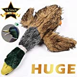 wangstar Pet Mallard Duck Dog Toy, Squeaky Dog Toy, Plush Puppy Dog Chew Toy for Small Medium Dogs (16.5inch)