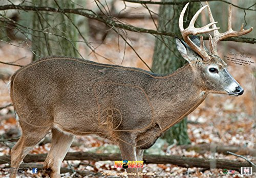 NiceTargets Broadside Right Deer 28