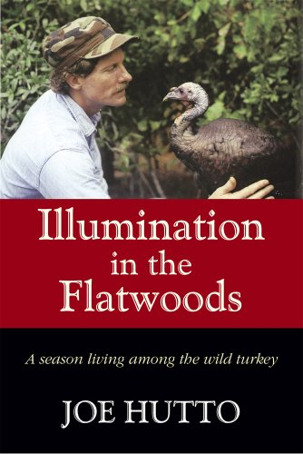 (Illumination in the Flatwoods: A Season Living Among the Wild Turkey)