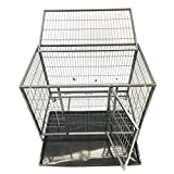 My1stPet Heavy Duty Dog Cage with 2 Doors, 37″ x 24″ x 31″ Review