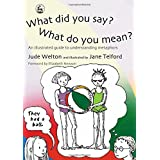 What Did You Say? What Do You Mean?: An Illustrated Guide to Understanding Metaphors