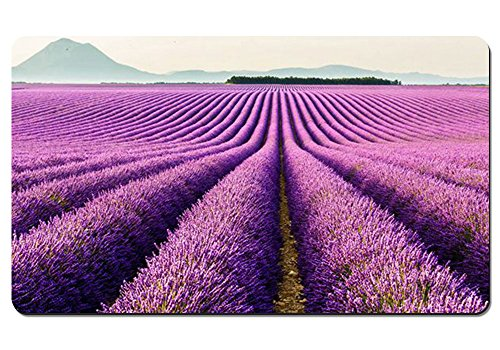 Computer Keyboard Mousepad Water-Resistant Non-Slip Base - Provence Valensole France - Large Extended Gaming Mouse Pad Mat - 23.6x13.8 Inches