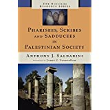 Pharisees, Scribes and Sadducees in Palestinian Society (Biblical Resource)