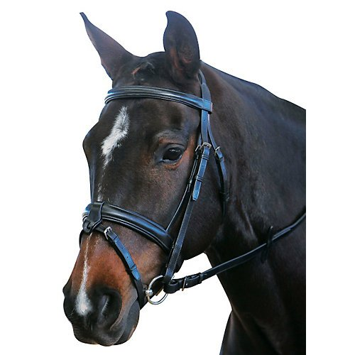 - Kincade Padded Flash Full Bridle, Brown