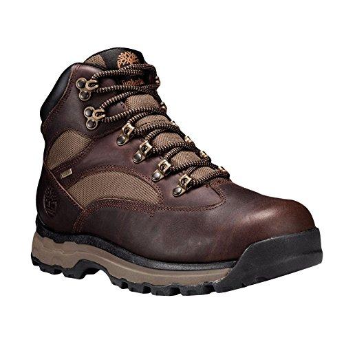 Randonn Chocorua Chaussures Trail Timberland De wqFIdf6