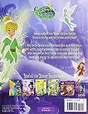 Disney Fairies: Winter Wonderland Reusable Sticker Book