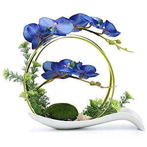 NNEE Artificial Phalaenopsis Orchid Arrangement with Decorative Flower Pot – Blue Orchild A323