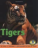 Tigers, Lesley A. DuTemple, 0822530104