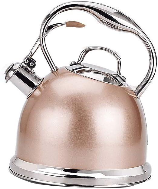 Hervidor Champagne Acero Inoxidable 304 Agua Potable Segura ...