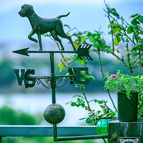 zenggp Old Wrought Iron Dog and Cat Weather Vane Garden Decoration Garden Decoration Wind Vane,B