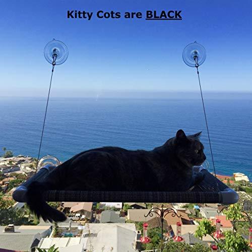 Kitty Cot Original World's