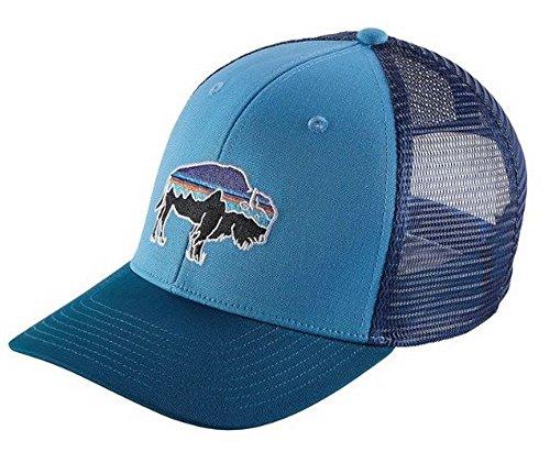 Patagonia Fitz Roy Bison Trucker Snapback Hat Radar Blue ...