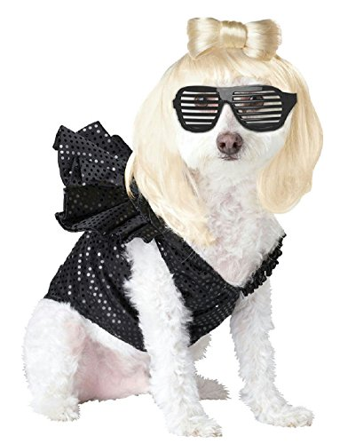 Pop Sensation Dog Costumes (Novel Pop Sensation Lady Dogga Dog Costume Size Large)