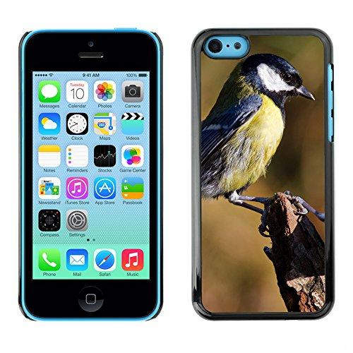 Premio Sottile Slim Cassa Custodia Case Cover Shell // F00008252 oiseau // Apple iPhone 5C