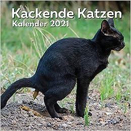 Katzen Kalender 2021