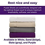 Purple The Sheets