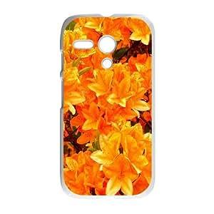 Motorola Moto G Csaes phone Case Azaleas DJH94330