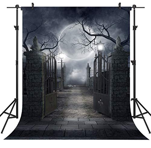 Ouyida Halloween Horror Night 6X9FT CP Pictorial cloth Photography Background Computer-Printed Vinyl Backdrop TP17]()