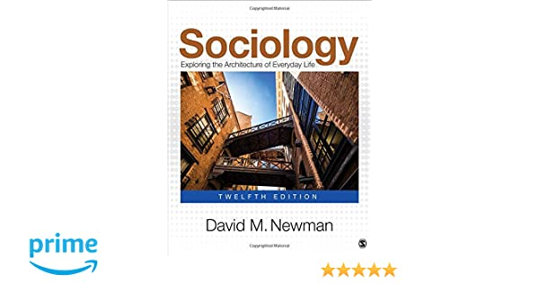 Sociology Exploring The Architecture Of Everyday Life Pdf