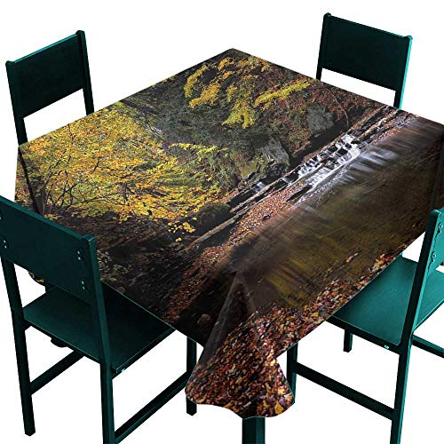 Waterfalls Copper Leaf (Warm Family Nature Washable Table Cloth Small Waterfall Brandywine Creek National Park Ohio Autumn Fallen Leaves Great for Buffet Table D55)