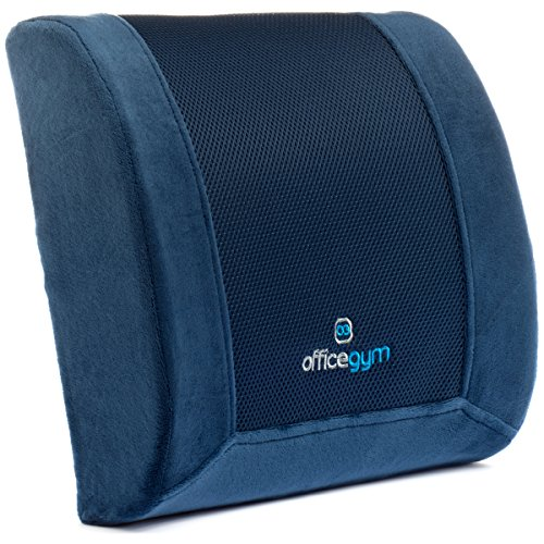 officegym-memory-foam-lumbar-cushion-for-lower-mid-back-pain-relief-best-orthopedic-design-lumbar-su