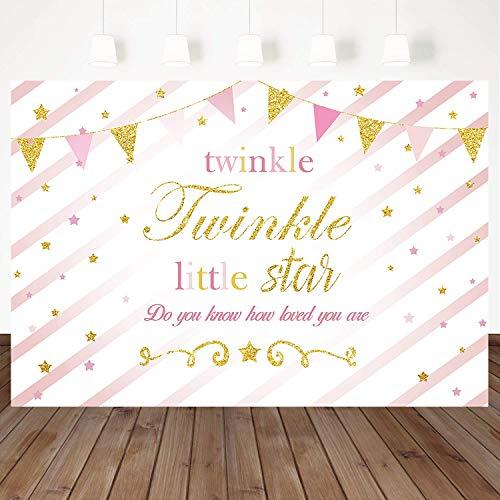 Mehofoto Little Star Birthday Backdrop Pink Twinkle Twinkle