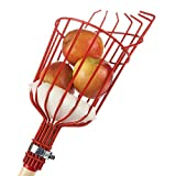XBSD Fruit Picking Tools Fruit Picking Rods with Baskets for Mats to Prevent Bruises Ideal for Picking Oranges Apples or Fruits of Any Kind