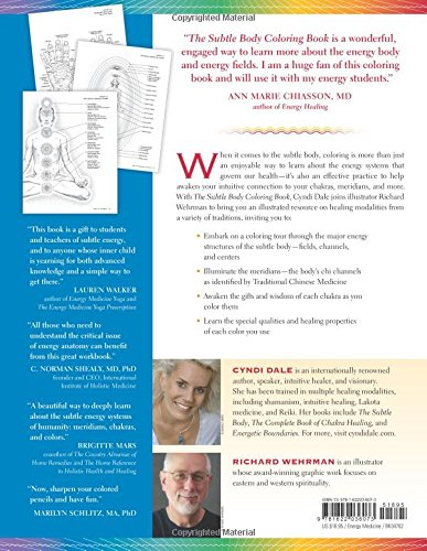 reikiatsu the reiki practioners guide to working with the meridians