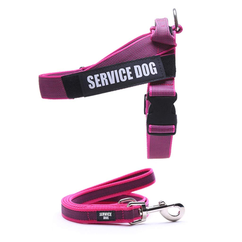 Purple L Purple L Dog Vest Harness Home Large Medium Dog Chest Strap Traction Rope Black Outdoor Car Pet Supplies (Including 1.2m Traction Rope) (color   Purple, Size   L)