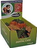 Paragon DPN01159 Alligator Dog Treat, Large, My Pet Supplies