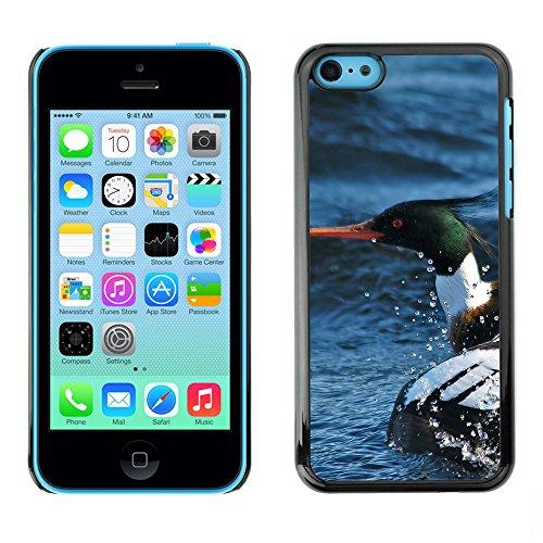 Premio Sottile Slim Cassa Custodia Case Cover Shell // F00025218 Merganser canard // Apple iPhone 5C